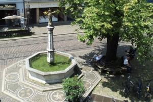 Freiburg Oberlinden grünwerk Anfrage